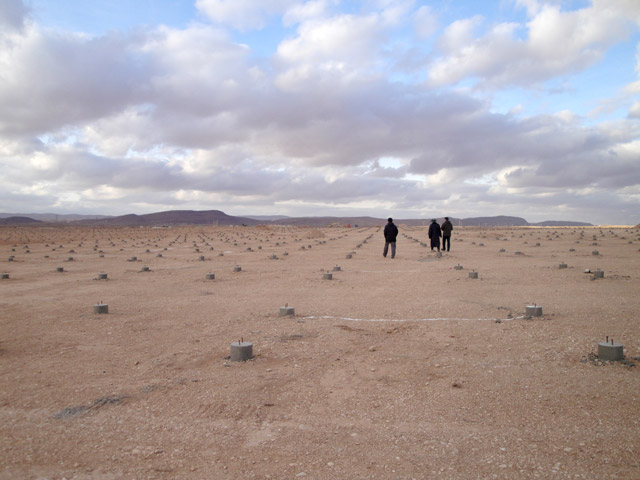 233 photovoltaic power station project in Algeria, Balic stand out